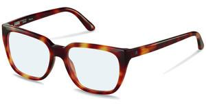 Claudia Schiffer C4006 B light havana