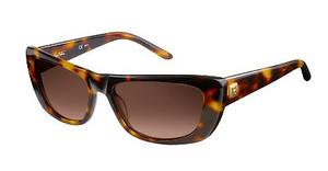 Pierre Cardin P.C. 8442/S 2RY/J6 BROWN SFHAVANA (BROWN SF)