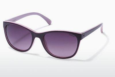 Sonnenbrille Polaroid P8339 C6T/JR - Purple