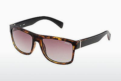 Sonnenbrille Sting SS6543 738P