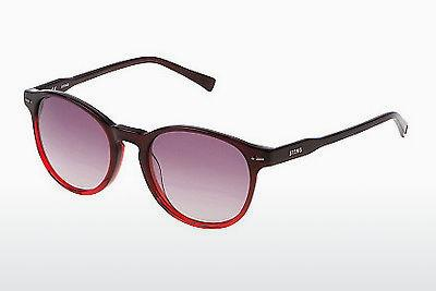 Sonnenbrille Sting SS6583 06BD - Rot