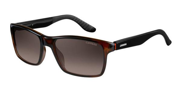 Carrera CARRERA 8002 2XF/LA BROWN SF PZHVN BLACK (BROWN SF PZ)