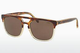 Sonnenbrille Polo PH4125 563773 - Transparent, Braun, Havanna