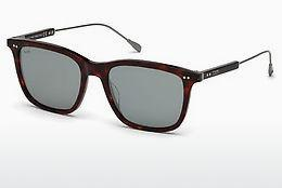 Sonnenbrille Tod's TO0230 54C - Havanna, Red
