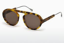 Sonnenbrille Tod's TO0231 53J - Havanna, Yellow, Blond, Brown