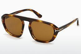 Tom Ford Sonnenbrille » FT0531«, schwarz, 01V - schwarz/blau