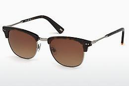 Sonnenbrille Web Eyewear WE0170 52F - Braun, Havanna