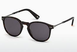 Sonnenbrille Web Eyewear WE0177 52A - Braun, Havanna