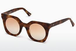 Sonnenbrille Web Eyewear WE0231 53Z - Havanna, Yellow, Blond, Brown