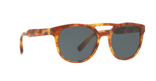 PRADA Prada Herren Sonnenbrille » PR 13TS«, braun, HAJ2K1 - braun/grau